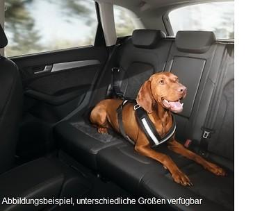 Hundeschutzgurt Größe L (für große Hunde)